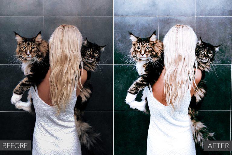 cat-lover-ba-2